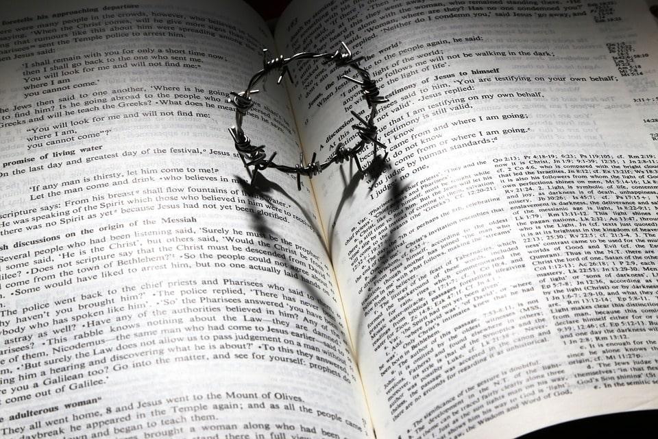 bible-love