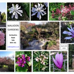 Walkden-Gardens