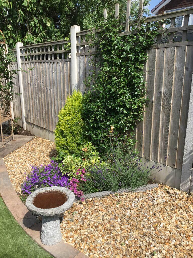 Jacks-garden-bird-bath