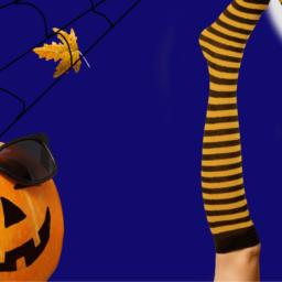 pumpkin-and-tights